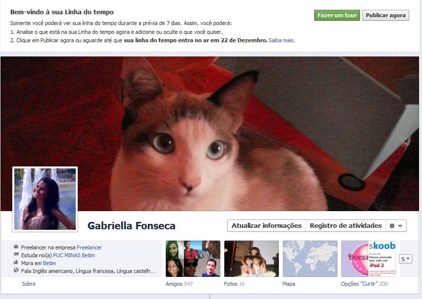 timeline-facebook-ii