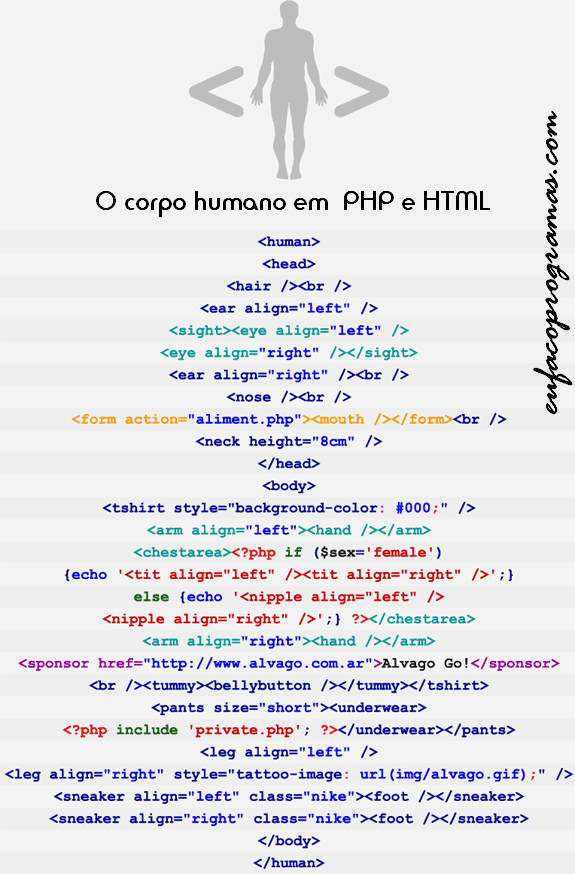 corpo-humano-html